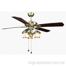 Hyamass 2pcs Vintage Birdcage Pendant Ceiling Fan Danglers Fan Pulls Chain Extender with Ball Chain Connector (Bronze) - B07DLMYC4T