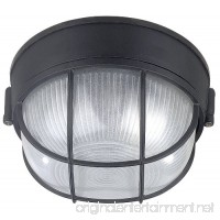 Canarm IOL17BK The Outdoor 1-Bulb Flush Mount Exterior Light with Frosted Glass Globe Black - B003TQLOES