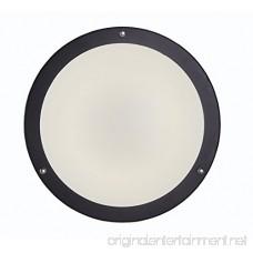 Surpars House LED Flush Mount Ceiling Light 4000K (Daylight Glow) 15W (60w equivalent) 12 Inch Black - B074J52DK1