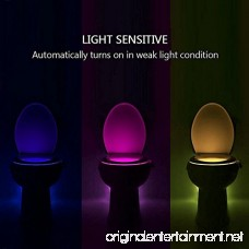 iBetterLife 2 Pack Advanced LED Toilet Lights Motion Detection 8-Color Changing Inside Toilet Bowl Nightlight Infrared Auto Motion Activated Sensor Seat Lamp Fixtures (Only Activates in Dark) - B074D76VFK