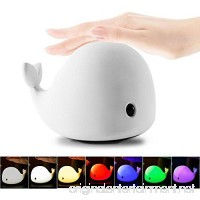 Mystery 4-Modes Children Night Light  USB Rechargeable Dolphin Night Light With Warm White  Strong White  5 Single Colors and 5-Color Breathing Modes  Sensitive Tap Control for Baby Adults Bedroom - B06X42S39Z
