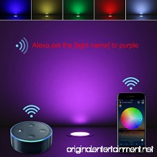 Led Step Lighting Kits FVTLED 30pcs Φ1.22 WiFi Smart LED Light Compatible with Alexa Google Home Low Voltage LED Stair Light Waterproof Outdoor RGB Multi Color Changing Lights - B079DN9K19