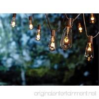 20Ft Outdoor Patio String Lights set of 20 Glass ST40 Edison String Lights Garden/Backyard Party/Wedding Indoor String Lights(Plus 1 Extra Bulbs)-Brown - B07BZSKHK6