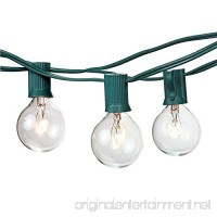 G40 Clear Globe String Light Bulbs with 25 Clear Bulbs by Bella Inizio - Best Outdoor Bistro lights Garden Party Backyard Patio lighting. (Green) - B01H2OHQFS