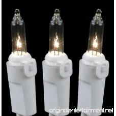 Novelty Lights 50 Light Clear Christmas Mini Light Set White Wire 25' Long - B004O2RQ20