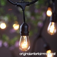 Outdoor Commercial String Lights- AMLIGHT 24 Ft Heavy Duty Weatherproof Lighting Strands- 14 Gauge Black Cable with 12 Hanging Sockets- 18 Bulbs- Perfect Patio Garden or Party - B01B7K4EX0