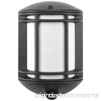 It's Exciting Lighting IEL-1300 Cambridge Battery Powered Motion Sensor LED Security Light  Black Finish - B0783RPJ3H