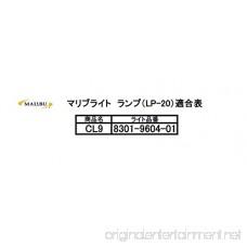 Malibu 8301-9604-01 20 Watt Cast Metal Flood Light Fixture - B002ZRPMA4