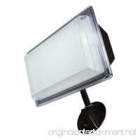 Outdoor Security LED Flood Light-lights of America- 3000 Lumens-30 W-very bright - B01900EK3I