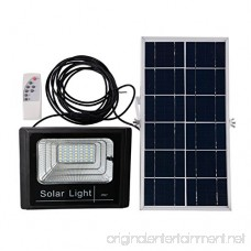 Outdoor Solar Light Waterproof IP67 BRLighting LED Flood Light with Smart Remote Solar Power Spotlight for Home Garden Yard Lawn Pool Light - B07BMMWDFV