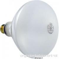 Pentair Amerlite Lights Floodlamp medium base 500 watt 120 volt Replacement Parts 79102100 - B003ZTJ2CU