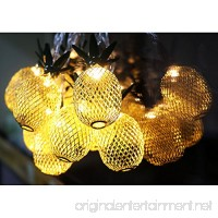 Aytai Pineapple Fairy String Lights Gold Metal Mesh 10 LED Battery Operated String Lights for Hawaiian Luau Birthday Party Christmas Wedding Indoor Outdoor Party Decoration (Warm White) - B07BXF35SW