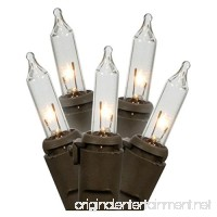 Gerson 92154 - 100 Light 27.5' Brown Wire Clear Miniature Christmas Light String Set - B005FY21LM