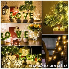 Kohree Christmas String Light Waterproof Battery Powered 100 LEDs 33ft Long Ultra Thin String Copper Wire Decor Rope Flexible Light with Timer Perfect for Weddings Tree Party Xmas 3 Packs - B01KL9KVCQ