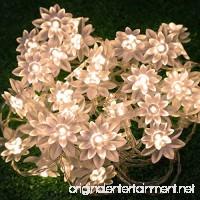 LED String Lights 4M/13feet 40 LED Lotus Flower for Chrismas  Party  Wedding  Indoor  Garden Décor (Warm white) - B00L25HTXI