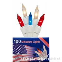 Nantucket Home Patriotic 100 Mini Lights Red White and Blue Indoor Outdoor Use Decoration - B06Y1TN44C