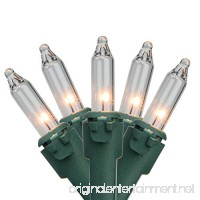 """Northlight Set of 20 Clear Mini Christmas Lights 2.5"""" Spacing - Green Wire - B0733GQS9S"""