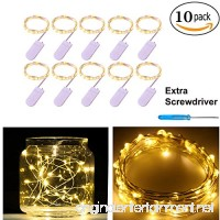 Pack of 10 LED Starry String Lights CR2032 Battery Operated  20 Micro Warm White Fairy LEDs on 3.5ft Silver Coated Copper Wire - B01FQT7NMW