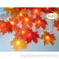 sexyrobot Fall Maple Leaves Garland  Faux Orange Harvest Lights Decoration Battery Powered Lighted Garland with 30 Lights  9.8 Feet Orange Red Leaves - B076BNBG1S
