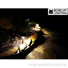 2 Pack - Super Bright Solar Path Lights 60 Lumens LED Solar Landscape Lights for Pathway Warm White (3000K) Waterproof Brightest on Market - B074JFHK79