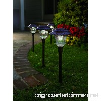Set of 4 Solar Garden Path Lights Glass and Powder Coated Cast Aluminum Metal 6 Bright LEDs per Light 50 Lumens Output per LED Easy No Wire Installation Outdoor All Weather Bronze - B005EZZUDI