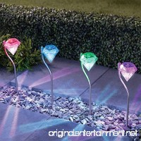 Solar Lights Outdoor - SurLight Solar Garden Lights Color Changing Garden Stake Lights for Garden Pathway Walkway Patio Lawn Yard Outdoor Decor 4 Pack - B0722P58DG