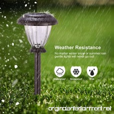 Sunwind Solar Pathway Lights Outdoor Waterproof Glass Landscape Lights 6-Pack Warm White LED for Garden Path Patio Yard Walkway and Driveway (Bronze Metal) - B07D3P15R1