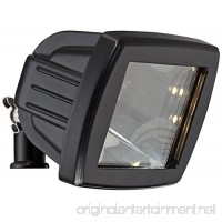 Black Low Voltage LED Landscape Flood Light - B00DJ5EF1S