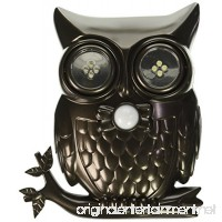 Decorative LED Motion Sensor Hooting Owl Light - B01F7KAU0W