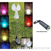 Angel Solar Light with Fiber Optic Wings (Set of 2) with Free LED Keychain Light - B00LU0UAMC