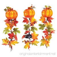Collections Etc Fall Pumpkin And Leaves Solar Light Garden Stakes - Set Of 3 - B073T97GG4