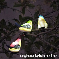 SOLAHOMF Solar Outdoor Decoration Lights- Bird Shaped Multi-colored Decoration Lights with Clip for Garden Patio Tree Decoration Landscape Lighting 3 Pack - B0716RVCY7