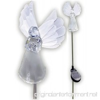 Solar Wholesale 1033-2 Solar Angel Lights Garden Stakes (Box of 2 Units) - B00LOQ2B7E