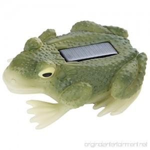 Trenton Gifts Solar Frog - B06Y47JZ8T
