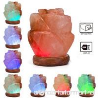 Niubity Himalayan Pink Natural Salt Lamp USB Light Wooden Base Himalayan Crystal Rock Salt Lamp Air Purifier Night Light (Rose) - B076J6SH9B