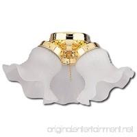 Craftmade ECK11BB 3-Light Frosted Tulip Glass Light Kit Bright Brass - B003VO156U