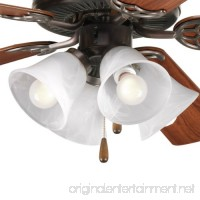 Progress Lighting P2610-20 4-Light Kit with White Washed Alabaster Style Glass For Use with P2500 and P2501 Ceiling Fans Antique Bronze - B001BQLPSS
